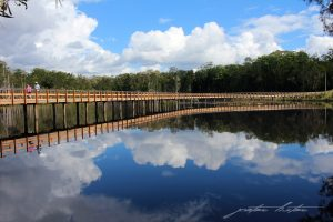 Urunga Wetlands Boardwalk Peter Lister