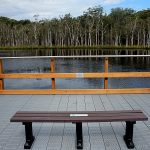 Urunga Wetlands & Boardwalk Seat Peter Lister