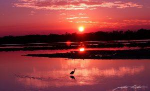 Urunga NSW Kalang River Sunrise